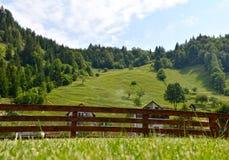 Summer mountain landscape. Blue sky and a green meadow - Cheile Gradistei - Romania Stock Photo