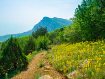 Summer mountain landscape in Crimea Stock Images