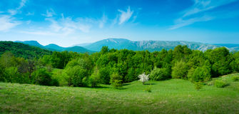 Summer mountain landscape in Crimea Royalty Free Stock Photography