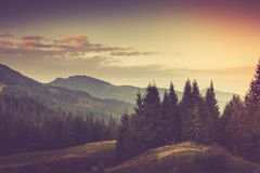 Summer mountain landscape. Filtered image:cross processed vintage effect Stock Photos