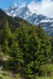 Silvretta Alps summer view, Austria Stock Images