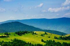 Summer mountain landscape, green hills and trees in the warm sun Stock Photo