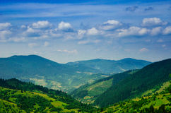 Summer mountain landscape, green hills and trees in the warm sun Stock Photos