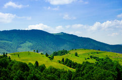 Summer mountain landscape, green hills and trees in the warm sun Royalty Free Stock Photography