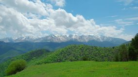 Summer mountain landscape, green meadows against the background of snow-capped mountains stock video