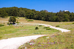 Summer mountain landscape in Italy Royalty Free Stock Photography