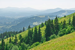 Summer mountain landscape Royalty Free Stock Image