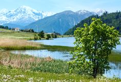 Summer mountain landscape with lake (Italy) Stock Photography