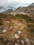 Summer mountain landscape with  low cloud Royalty Free Stock Photos