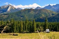 Summer mountain landscape Royalty Free Stock Photos