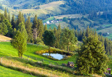 Summer mountain landscape with small pool Royalty Free Stock Image