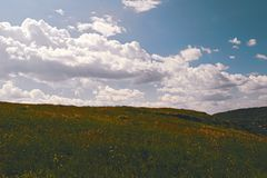 Summer mountain landscape. Summer landscape on the mountain against the sky and clouds Stock Photography