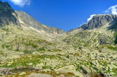 Summer mountain landscape. Stock Image