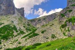 Summer mountain landscape. Stock Photography