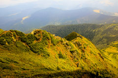 Summer mountain landscape. In the sunlight Royalty Free Stock Photo