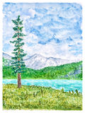 Summer Mountain Landscape with Tall Fir Tree and Tarn Stock Image