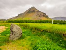 Summer mountain landscape with the valley and yellow flowers. In Iceland Royalty Free Stock Image