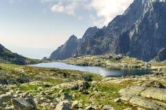 Summer mountain landscape. Stock Images