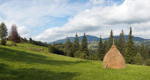 Summer mountain meadow. Summer mountain green meadow with stackes of hay (Slavske village, Carpathian Mts, Ukraine). Six shots composite picture Royalty Free Stock Image