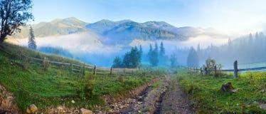 Summer mountain misty panorama. Stock Photo