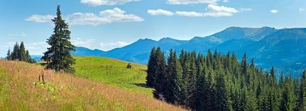 Summer mountain panorama (Carpathian, Ukraine) Royalty Free Stock Images