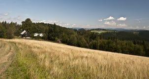Summer mountain panorama royalty free stock photography