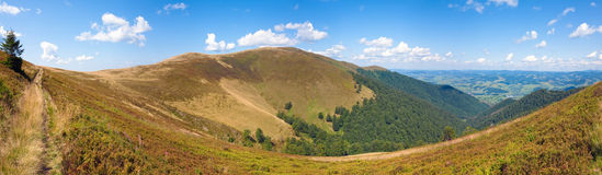 Summer mountain panorama (Ukraine, Carpathian) Stock Image