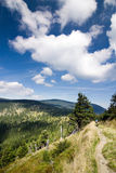Summer mountain ridge. Jeseniky hills-Czech Republic/Europe Royalty Free Stock Photo
