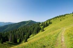 Summer mountain ridge Stock Photography