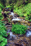 Summer mountain river Royalty Free Stock Photography