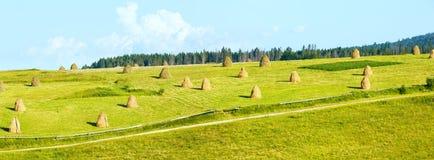 Summer mountain rural panorama with haystacks (Carpathian, Ukrai Royalty Free Stock Image