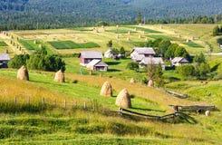 Summer mountain rural view with haystacks (Carpathian, Ukraine) Stock Images