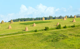 Summer mountain rural view with haystacks (Carpathian, Ukraine) Stock Image
