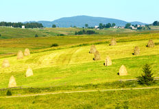 Summer mountain rural view with haystacks (Carpathian, Ukraine) Royalty Free Stock Photography