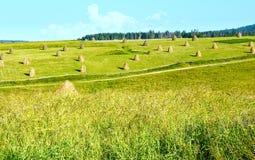 Summer mountain rural view with haystacks (Carpathian, Ukraine) Stock Photos