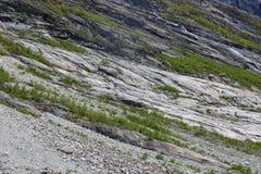 Summer mountain slope Stock Image