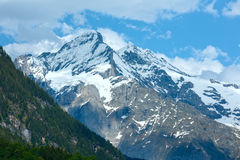 Summer mountain with snow (Switzerland) Royalty Free Stock Image
