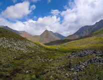 Summer in the mountain tundra Stock Photo
