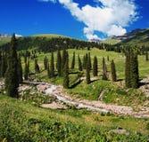 Summer mountain valley Stock Photo