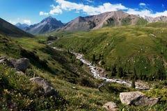Summer mountain valley Royalty Free Stock Photos