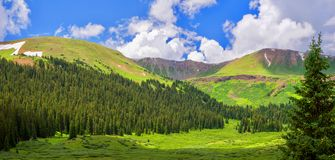 Summer Mountain Valley View Near Aspen Colorado stock images