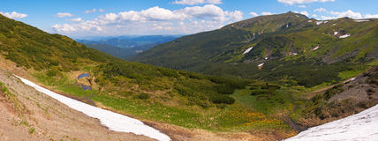 Summer mountain view Royalty Free Stock Image