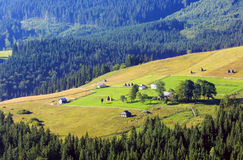 Summer mountain view (Carpathian, Ukraine). stock photo