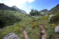 Summer mountain view. (Caucasus, Russia Stock Photography