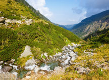 Summer mountain view (Romania) Royalty Free Stock Photography