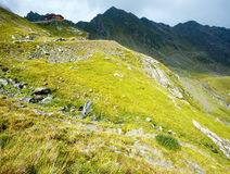 Summer mountain view (Romania) Royalty Free Stock Images