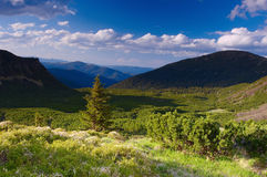 Summer in mountains. Summer landscape in mountains Carpathians, Ukraine royalty free stock image