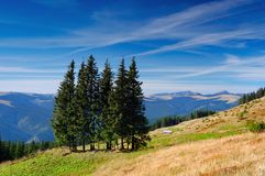 Summer in mountains. Summer landscape in mountains Carpathians, Ukraine Stock Image