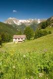 Summer mountains Stock Photos