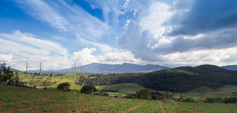 Summer mountains green grass Royalty Free Stock Image
